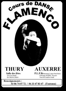 Vign_Cours_de_Flamenco